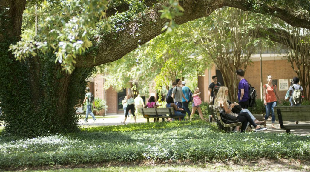 Students walking under the trees near the TCC Science and Math building