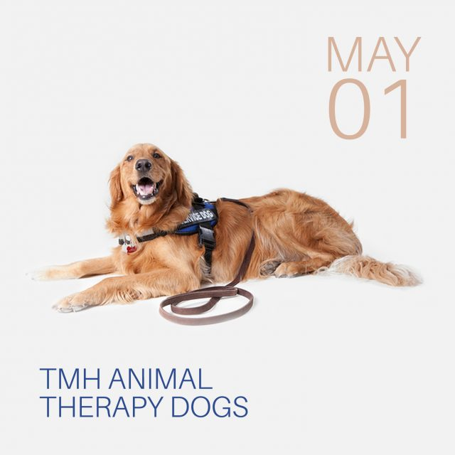 tcc library tmh animal therapy dogs tcc events calendar