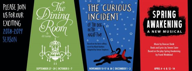 "Theatre TCC! ""The Curious Incident of the Dog in the Night-Time"""